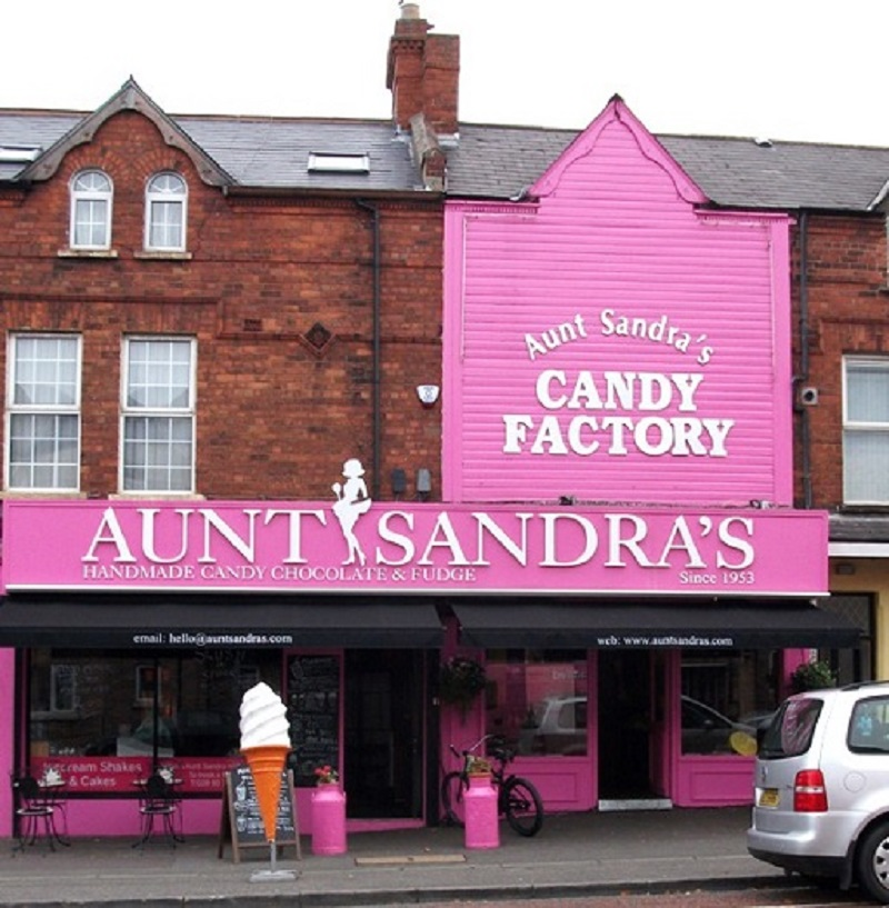 Visitar Aunt Sandra y estudiar inglés
