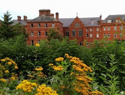 """Colegio público en Irlanda """"Dominician College Wicklow"""""""